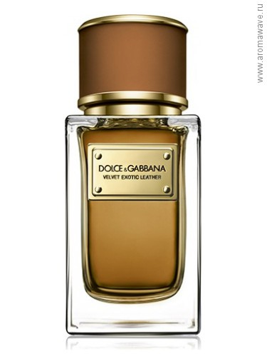 Dolce And Gabbana Velvet Exotic Leather